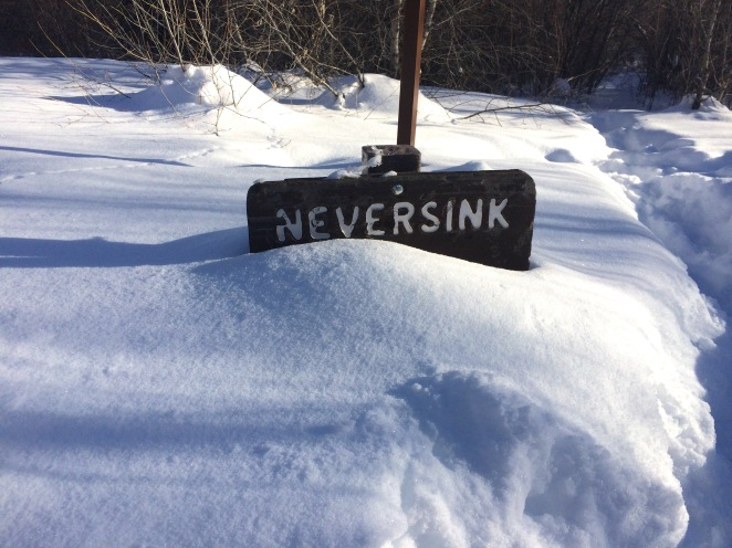 Neversink 2017